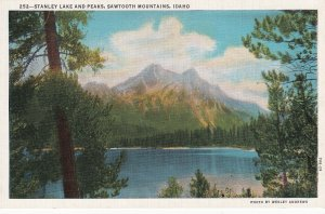 Stanley Lake and Peaks Sawtooth Mountains Idaho ID Postcard