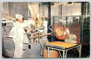 Pear River NY~American Cyanamid Factory~Lederle Lab~Soft Gel Capsule Worker~1960