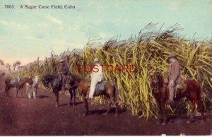 A SUGAR CANE FIELD, CUBA publ by Harris Bros. Co., Havana