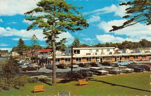 Mackinac Island Michigan Fort Restaurant Birdseye View Vintage Postcard K50665