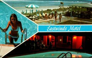 Florida Jacksonville The Eastwinds Motel