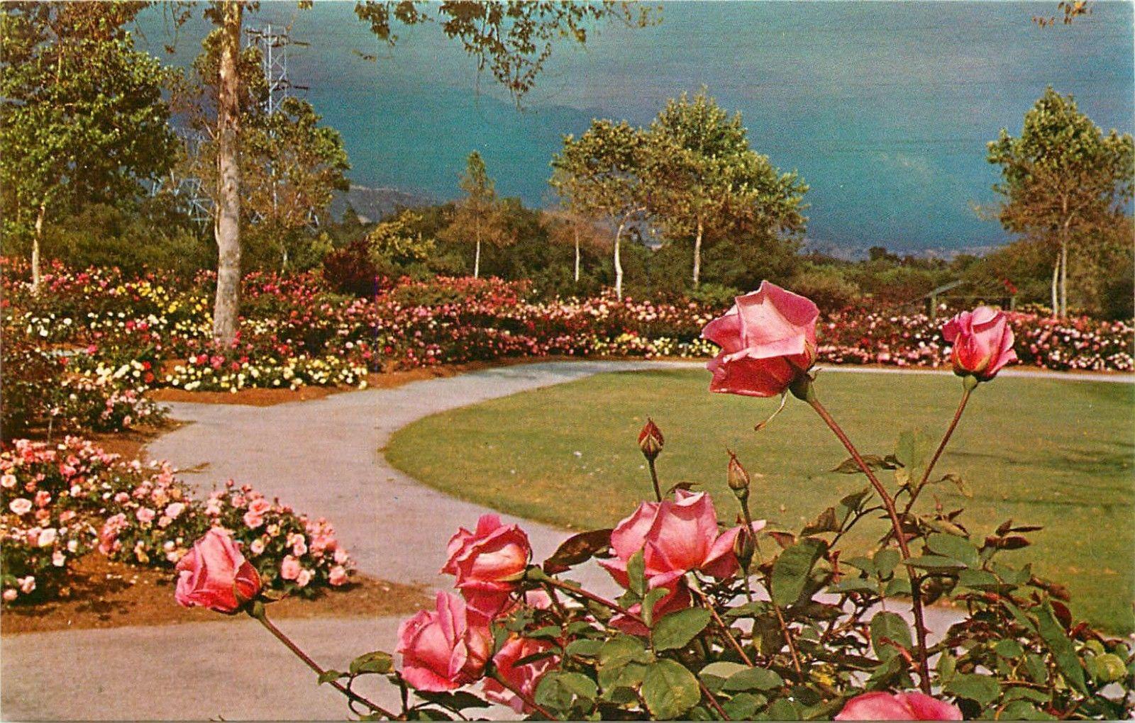 Descanso Gardens La Canada California CA Rose Garden 6 acres ...