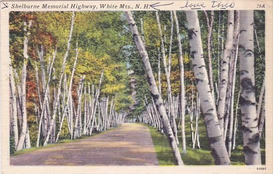 New Hampshire White Mountains Shelburne Memorial Highway 1965