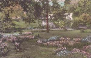 North Carolina Greensboro Formal Garden Univ Of North Carolina Albertype