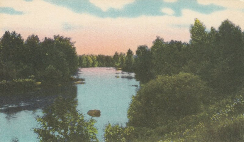 SPARROW LAKE , Ontario, Canada, 1910s; Greetings