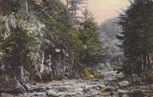 Scenic view,  Mosquito Creek,  Williamsport,  Pennsylvania,   PU_1908