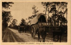 CPA Dans les Landes - Attelages de Mules sur la Route - Folklore (776825)