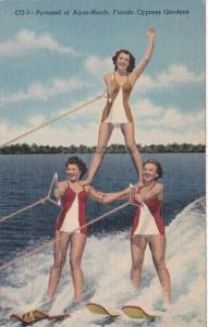 Florida Cypress Gardens Pyramid Of Aqua Maids Curteich