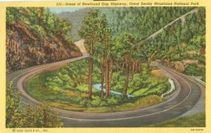 Scene of Newfound Gap Highway, Great Smoky Mountains Nati...