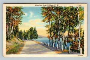 Allaben NY, Scenic Greetings, Roadway, Linen New York c1937 Postcard