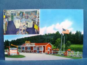 Postcard SD Hill City Dianne's Gift Corral  Gift Shop