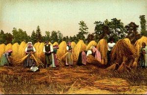 Sweden Farming Scene Making Hay