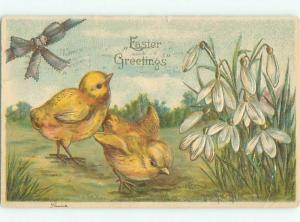 Divided-Back EASTER CHICK SCENE Cute Postcard AA0785