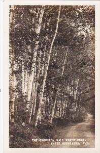 RP: The Birches , Gale River Road , WHITE MOUNTAINS , New Hampshire , 30-40s