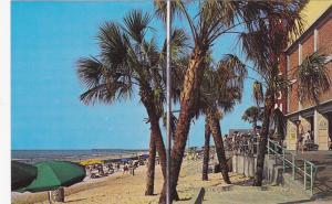 MYRTLE BEACH, South Carolina, 50-60s ; Beach at Pavilion