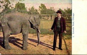 Illinois Chicago Lincoln Park Baby Elephant 1909