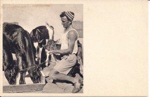 JUDAICA, Israel, Palestine, Kibbutz Kvutzah, Man with Goats, pre-1948, Farm