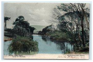 Postcard Mullet Creek Dapto, Australia 1907 A40
