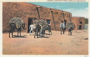 SANTE FE, New Mexico, 1910-30s; Burros Laden with Wood