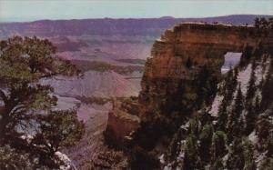 Arizona Grand Canyon National Park Angles Window Cape Royal