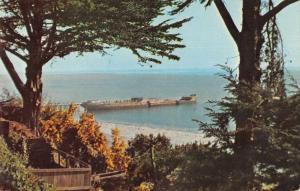 Aptos California Seacliff State Park Cement Ship Scenic View Postcard JD933996