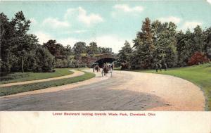 Cleveland Ohio~Lower Boulevard Looking Towards Wade Park~Horse & Buggy~c1910 Pc