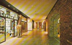 Canada Interior Shopping Area Place de Ville Centre Ottawa Ontario