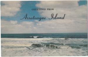 Greetings from Assateague Island, unused Postcard