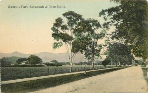 Hand-Colored Postcard Queen's Park Savannah & Race Stand, Port of Spain Trinidad