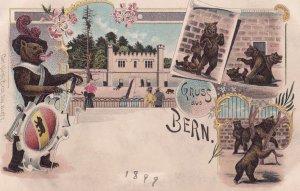 Bern Bear As Switzerland Roman Gladiator Antique 1899 Postcard