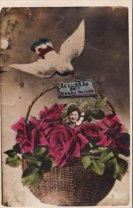Recuerdo de Ocochimilco Basket Of Roses