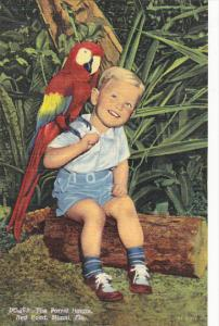 Florida Miami Young Boy With Macaw At The Parrot Jungle Red Road Curteich