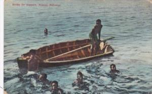 Bahamas Nassau Boys Diving For Coppers