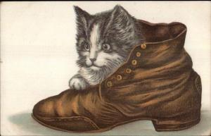 Cat - Adorable Kitten in Shoe c1910 Embossed Postcard