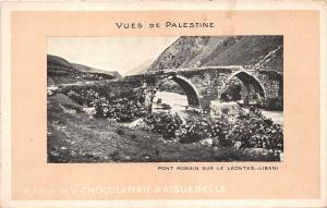 B57987 Liban Lebanon palestina palestine pont romain sur le leontes