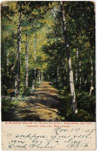 1905 Glen Summit Springs PA A Shaded Drive Lehigh Valley Railroad UDB Postcard