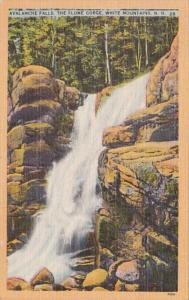 New Hampshire White Mountains Avalanche Falls The Flume Gorge 1950