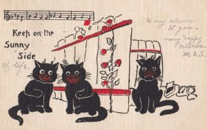Three Black Cats , 1907