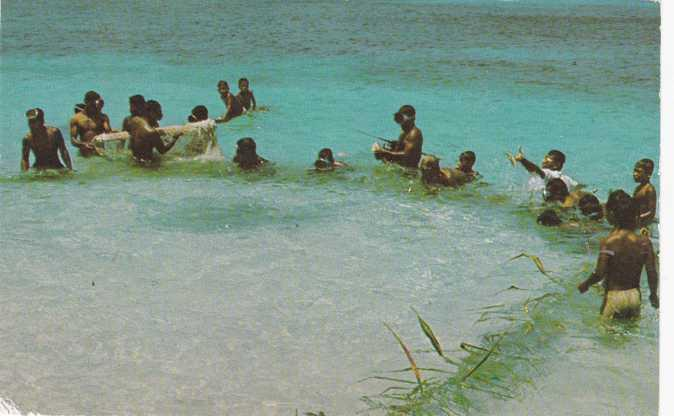 Pacific Ocean - Micronesia - Net Fishing - 1960s