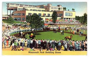New Jersey  Oceanport  Mommouth Park   Horses in Show Ring