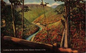 Postcard PA Pennsylvania Wellsboro Grand Canyon Colton Point Posted 1949 Linen