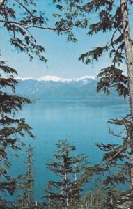 TASU, British Columbia, Canada, 1940-1960's; Newcombe Inlet In Tasu Sound