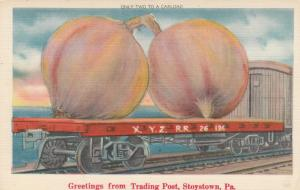 STOYSTOWN, Pennsylvania, 30-40s; Giant Onions on Railroad Car, Trading Post