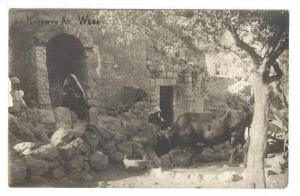 RP, Peasants at work , Palestine , 00-10s