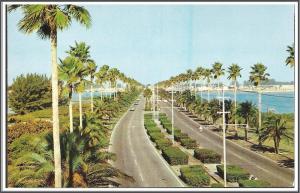 Florida - Memorial Causeway - [FL-092]