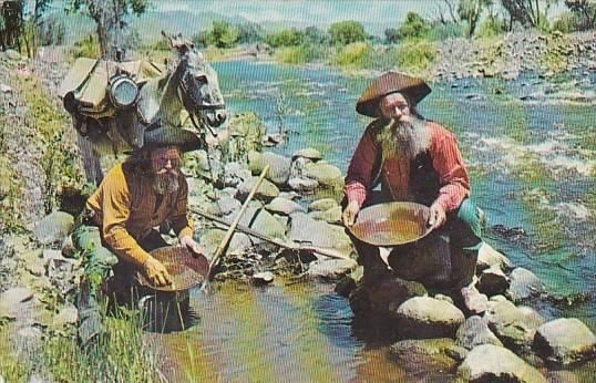 Panning For Gold In California