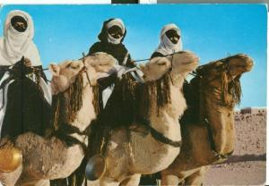 Libya, Touarek Riding Their Meharis, used Postcard