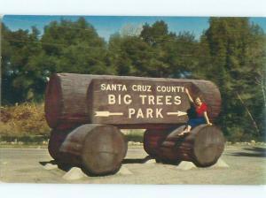 Pre-1980 BIG TREES PARK SIGN Santa Cruz California CA W6112