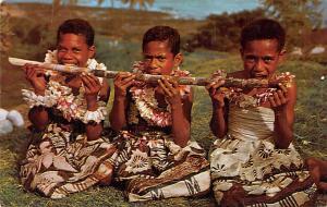 Fiji Sugar Cane Meal  Sugar Cane Meal