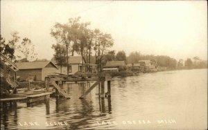 Lake Odessa MI Lake Scene c1910 Real Photo Postcard
